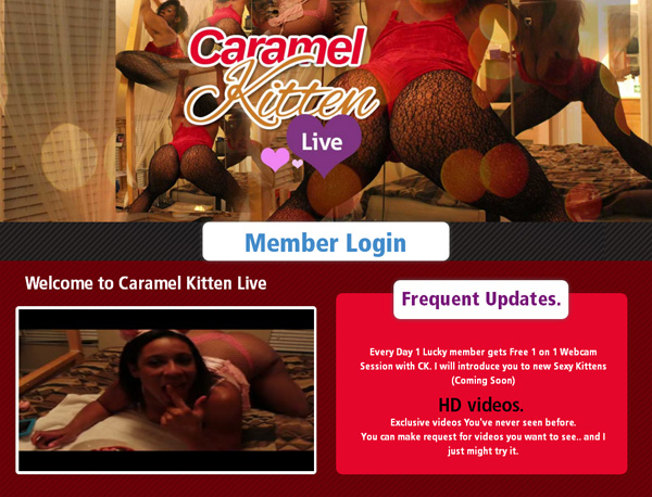 Free Premium Accounts For Caramel Kitten Live