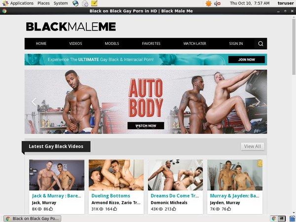 Blackmaleme Pornhub