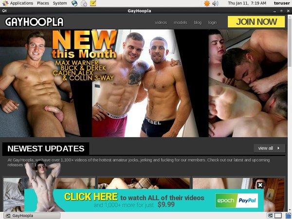 Gayhoopla Network Password